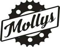 Велосипеды MOLLYS Fixed gear